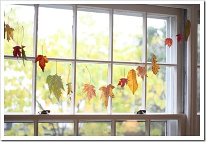 Fall Leaves | Waxed Leaves | TodaysCreativeBlog.net