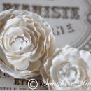plaster roses