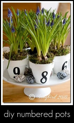 painted pots- spring idea