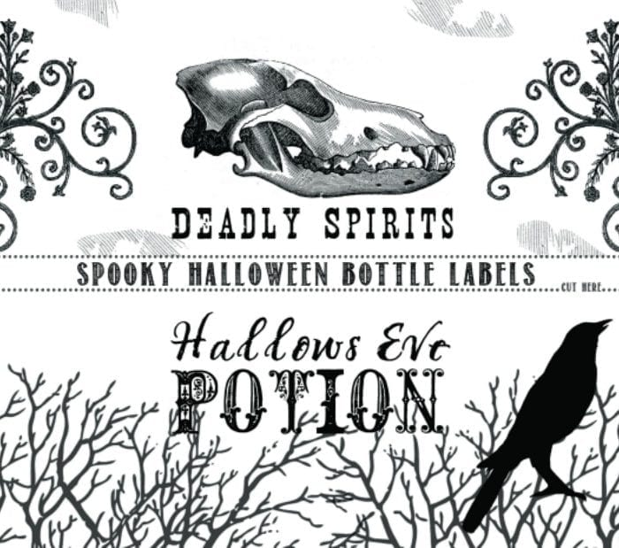 graphic regarding Printable Halloween Labels titled Printable Halloween Bottle Labels Todays Artistic Daily life