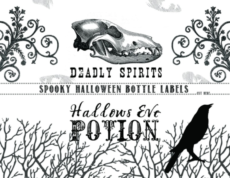 picture about Printable Halloween Labels identified as Printable Halloween Bottle Labels Todays Imaginative Lifetime