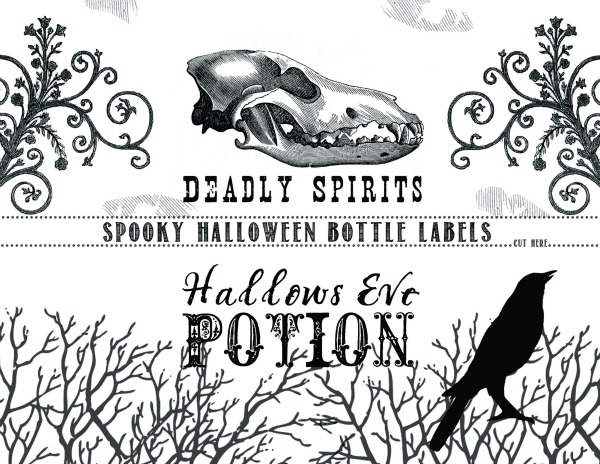 Printable Halloween Bottle Labels | TodaysCreativeBlog.net