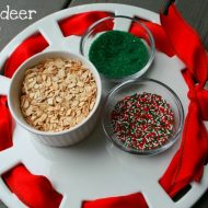 MAGIC Reindeer Food – Feed the Reindeer!