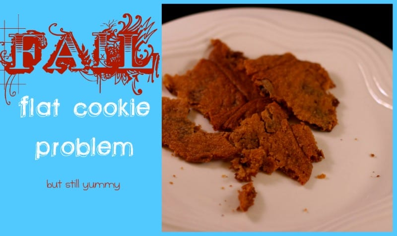 Cookie Fail! How Do you Make Chocolate Chip Cookies?