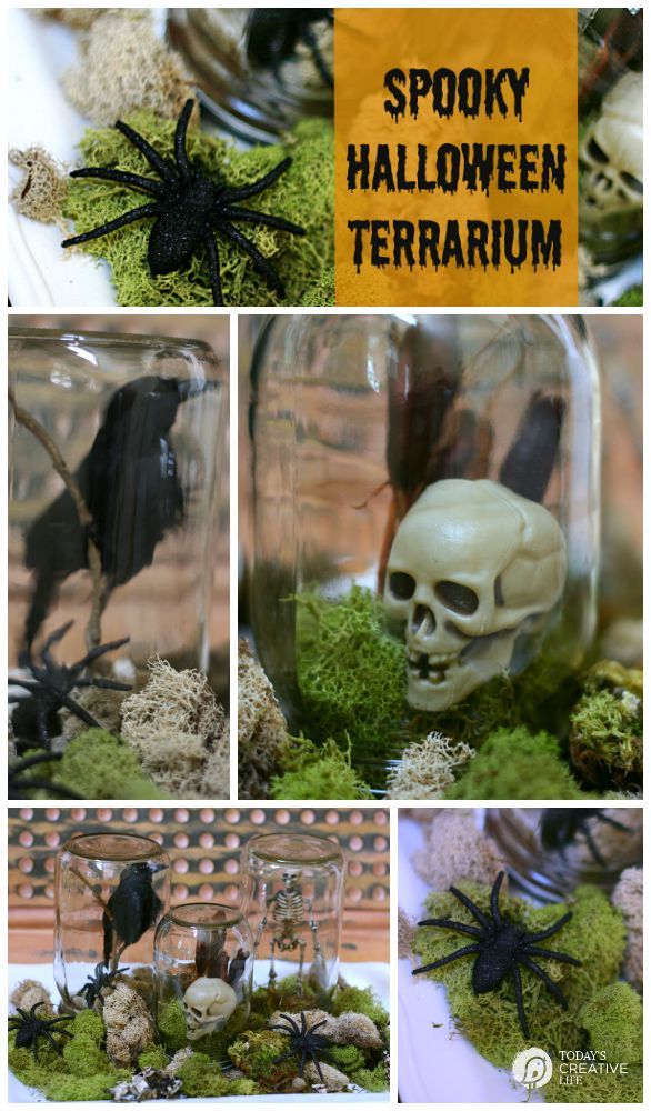 Halloween Spirit Mason Jar Halloween Terrarium | Decorating for Halloween just got easier! Grab a few jars, some inexpensive decorations, some moss and you're ready! See more on TodaysCreativeLife.com