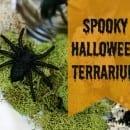 halloween terrarium jar