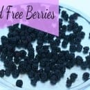 mold free berries