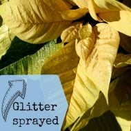 Glitter Spray Paint- Make your House Sparkle!