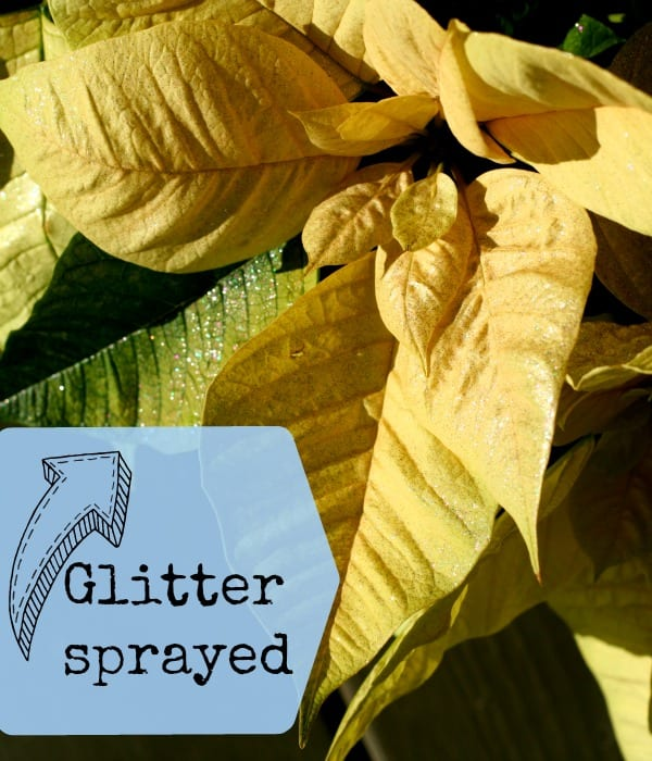 glitter spray paint