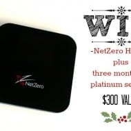 Fabulous Friday Giveaway- NetZero 4G Hotspot