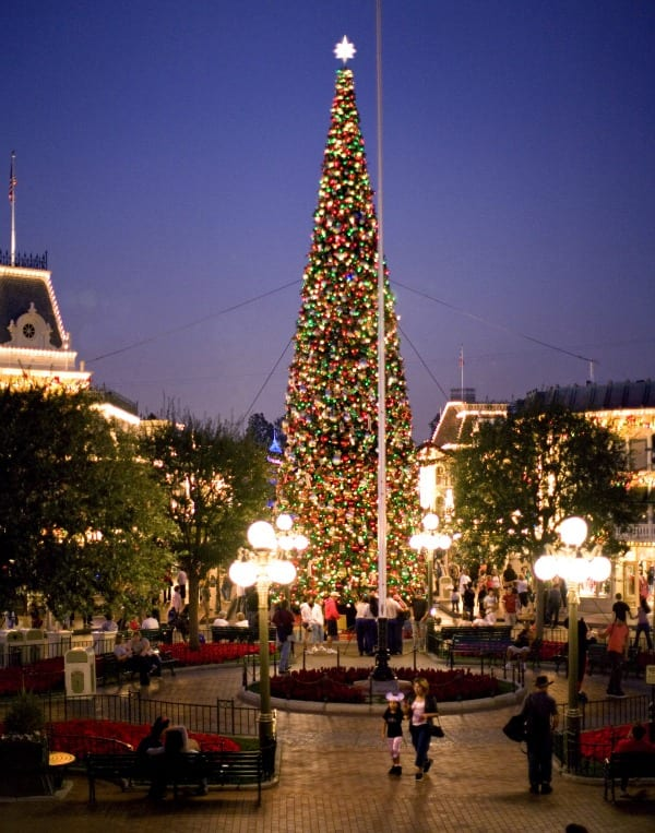 Disneyland Tours | Disneyland Christmas tree | TodaysCreativeBlog.net