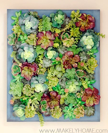 succulent wall - creative decorating