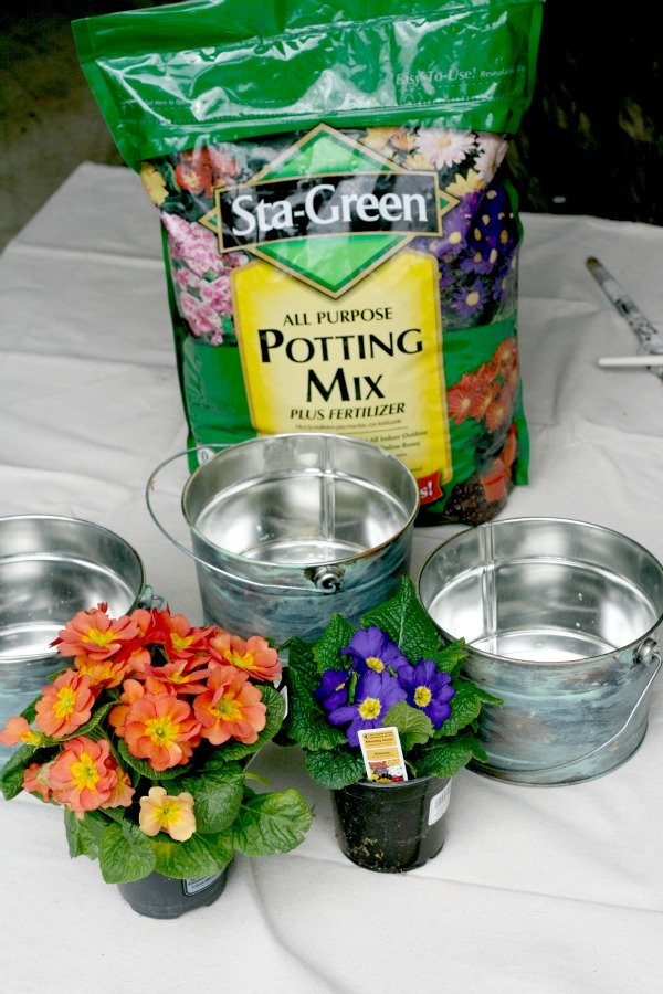 Potting soil, plants and buckets for planting.