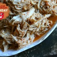 Copy Cat Cafe Rio Recipe- Shredded Chicken