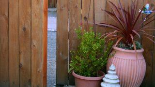 Planting Area - Potting Bench