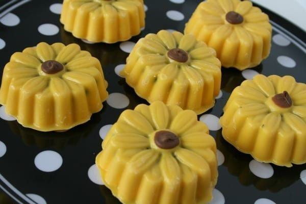 dipped sunflowers