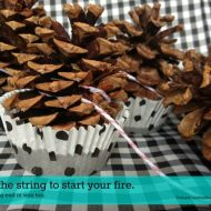 Pine Cone Fire Starters {DIY}