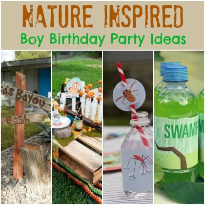 Nature inspired Boy Birthday party ideas
