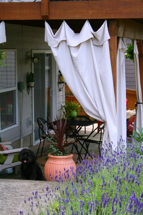 drop cloth outdoor drapes