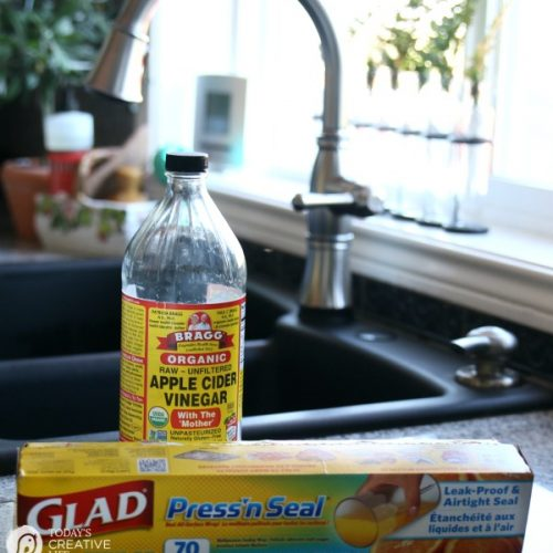 How To Get Rid Of Fruit Flies | Easy DIY Apple Cider Vinegar Non-Toxic Fruit Fly Trap. Easy Kitchen Hack | See how by clicking on the photo. TodaysCreativeLife.com