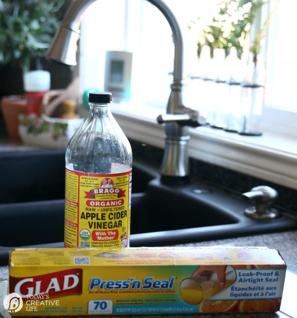 fruit salsa recipe how to get rid of fruit flys