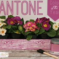 Color of the Year – Pantone Radiant Orchid