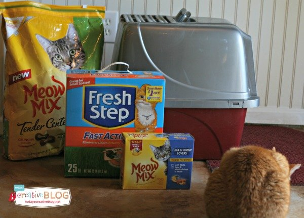Choosing the Right Cat Litter | TodaysCreativeBlog.net