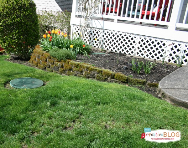 Prepping Your Yard for Spring | todayscreativeblog.net