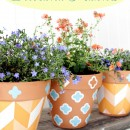 Painting Flower Pots | TodaysCreativeBlog.net
