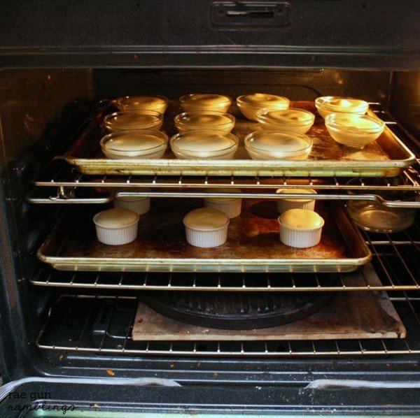 Cookie Bottom Mini Cheesecakes | TodaysCreativeBlog.net