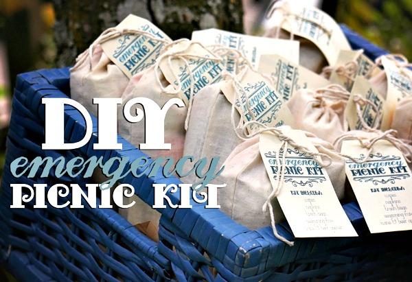 DIY Emergency Picnic Kit | TodaysCreativeBlog.net