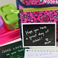 Reusable Lunch Box Notes