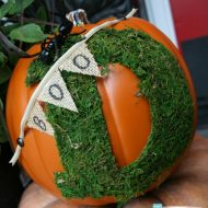 Trick Your Pumpkin No Carve Decorating