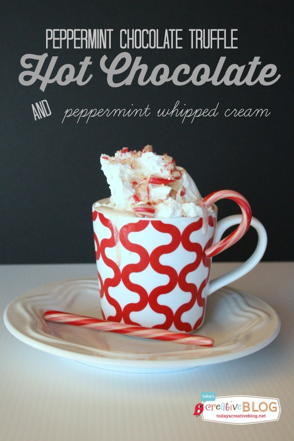 Homemade Peppermint Hot Chocolate | Use up your candy canes for your next batch of hot cocoa! Easy to make stove top or slow cooker. See the recipe at TodaysCreativeLife.com