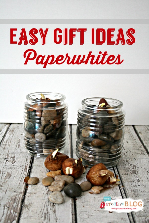 Easy Gift Ideas with Paperwhites | TodaysCreativeBlog.net