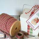 Santa's Special Delivery Printable Tags | TodaysCreativeBlog.net