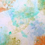 DIY Bubble Art Prints | DIY Wall Art | Crafts for Kids | See more creative ideas on TodaysCreativeLife.com