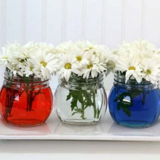 3 vases with daisies in red, clear or blue water.