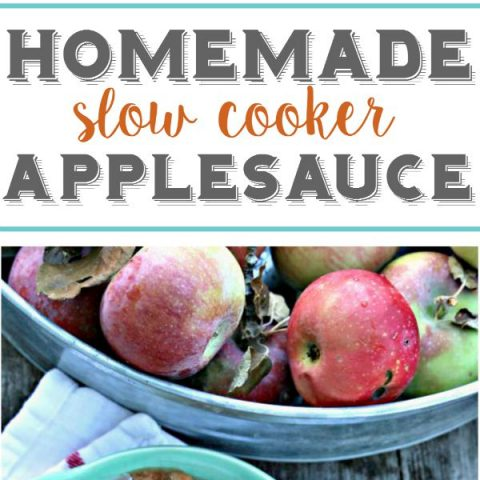 Homemade Slow Cooker Applesauce
