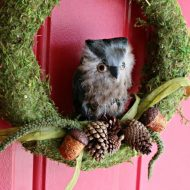 DIY Moss and Owl Wreath