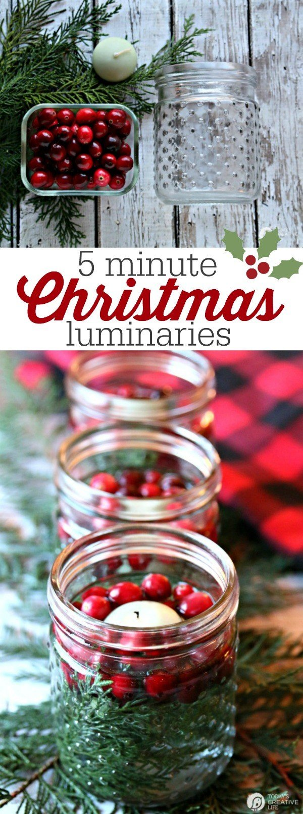 5 minute DIY Christmas luminaries | Quick and easy Christmas decorating. Whip up these floating candles with cranberries and cedar for a stunning table centerpiece. See more on TodaysCreativeLife.com