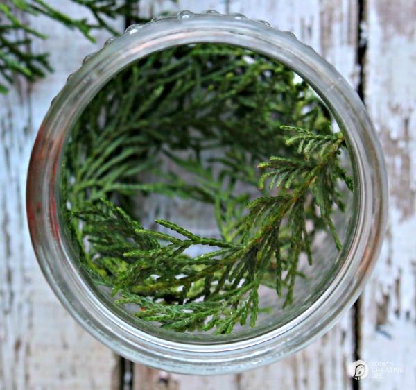 Glass jar with cedar clippings inside.