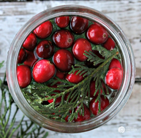 Easy Holiday Table Decor Cranberries, Cedar and Water in a jar.