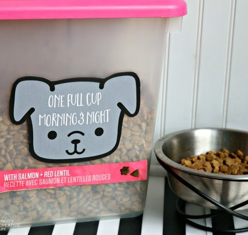 Custom Made Dog Food Container & Free Printable | Even dogs like pretty containers! See more on TodaysCreativeLife.com