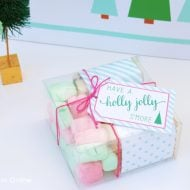 Holly Jolly S'mores Holiday Party