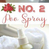 Homemade No.2 Poo Spray