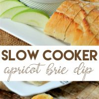 Slow Cooker Apricot Brie Dip