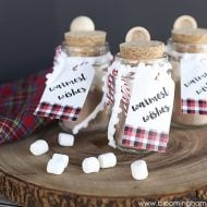 Mini Hot Cocoa Jars