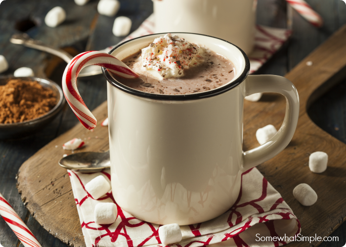 Hot Cocoa Milk Shake Recipe by Somewhat Simple for the Creative Girls Holiday Soiree. Find out the secret recipe for this cup of hot chocolate! It's creamy, rich and perfect for a holiday drink! See more on TodaysCreativeLife.com