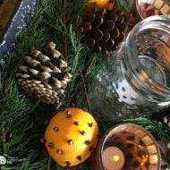 Orange Clove Natural Holiday Centerpiece
